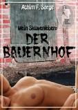 bdsm geschichten pdf erotik ravensburg